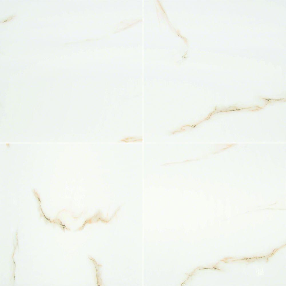 Aria Bianco 24X24 Polished Porcelain Tile