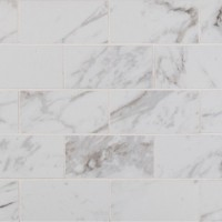 Pietra Carrara 2X4 Polished
