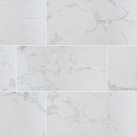 Praia Carrara 12X24 Matte Porcelain Tile