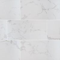 Praia Carrara 24X48 Matte Porcelain Tile