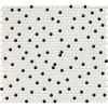 Domino White And Black Glossy Penny Round Mosaic