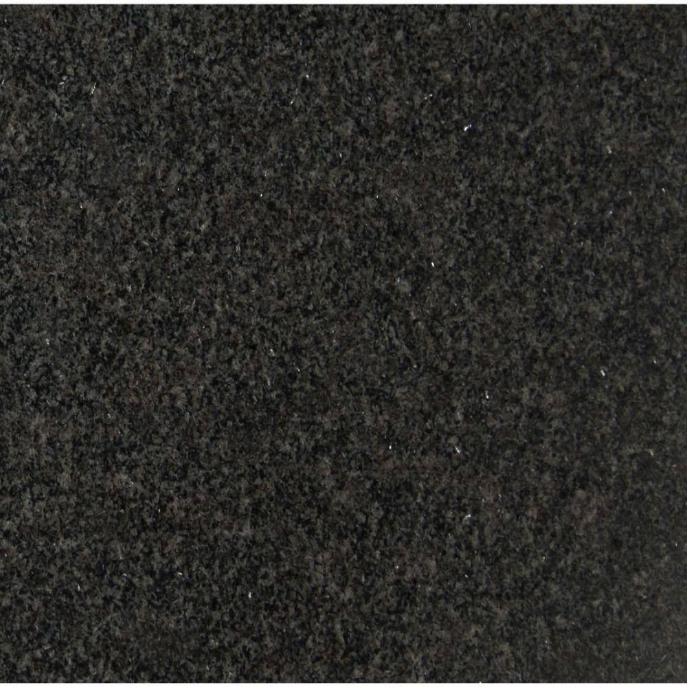 Impala Black 12X12 Polished
